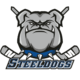 Steeldogs